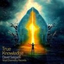 David Salgado - True Knowledge (Original Mix)