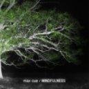 Max Cue - Feuerzeug (Original mix)