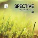 Spective - Warmth Of Sunshine (Original Mix)