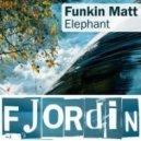 Funkin Matt - Elephant (Original mix)