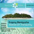 Evgeny Bardyuzha - Islands Of Tranquility (Blood Groove & Kikis Remix)