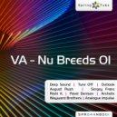Pavel Denisov - Alpha Aquari (Original Mix)