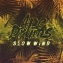 Ape Drums - Slow Wind (Original mix)