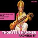 Thorsten Hammer - Radhika (Gruia Remix)