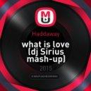 Haddaway - What is Love (dj Sirius mash-up)