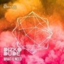 Dizkodude - What U Need (Original Mix)