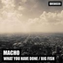 Macho - What You Have Done (Original mix)