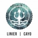 Linier feat. CAYO - Another Love (Original Mix)