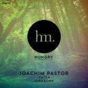 Joachim Pastor - Taiga (Original mix)