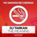 DJ Tarkan - The Meaning (Original Mix)