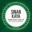 Sinan Kaya - What's The Matter With You (Original Mix)