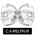 CamelPhat - Haus (Original mix)
