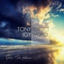 Tony Igy - Perfect world (Yuriy Pilin Remix)