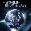 ALЁnka  - The World of DNB