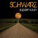 Schwarz - The Mechanic (Original Mix)
