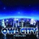 Owl City -  Fireflies (D-Velro Remix)