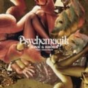 Psychemagik - Mink & Shoes (Original Mix)