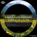 K Nass & Julian Rodriguez - Dandelion (Shane Robinson Remix)