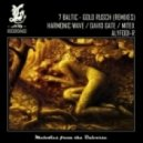 7 Baltic - Gold Rusch (Harmonic Wave Remix)