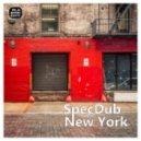 SpecDub - New York (Manuel Romero Remix)