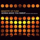 Ministry of Funk - Gonna Make You Sweat (Everybody Dance Now) 2016 (Instrumental Dance Mix)