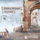 Dmitry Molosh - Blizzard (Silinder Remix)