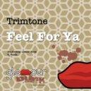 Trimtone - Feel For Ya (V_Valdi Remix)