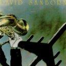 David Sanborn - Black Light  (Original Mix)