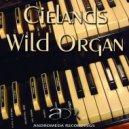 Cielands - Wild Organ (Original Mix)