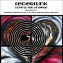 Federfunk - Love Is The Answer (Original Mix)