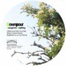 Downpour - Anything (Spielkinder & Low Sun Remix)