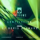 Dj Boris D1AMOND - The Dome Compilation Vol.2