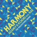 Adam F & Kokiri feat. Rae - Harmony (The Prototypes Remix)