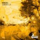 Radicall - Run Away (Original mix)