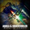 Aquila - Section IX (Drukverdeler & DJ Bim Remix)