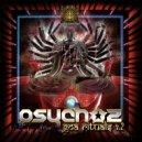 Psychoz - Scattered (Original Mix)