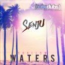 Senju - Beautiful Girl (Original Mix)