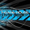 Insane House - Take Control (Original Mix)