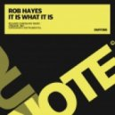 Rob Hayes - It Is What It Is (Original Mix)