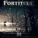 Fortitude - New Machine (Original Mix)