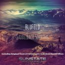 Blufeld - Saddleback Soaring  (Original mix)