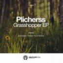 Plicherss - Pleasure (Original Mix)