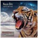 Nayio Bitz - Sugar Pie Honey Punch (Nikko Culture Remix)