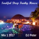 DJ Peter - Soulful Deep Funky House - Mix 1 2017