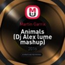 Martin Garrix - Animals (Dj Alex lume mashup)