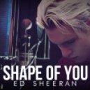 Ed Sheeran  - Shape of You  2017 (DJ Anıl B. Remix)