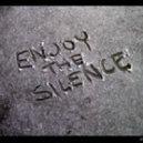 Delerium - Silence (Pavlin Petrov Remix)