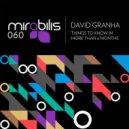 David Granha - The Blonde on Fresh (Original Mix)