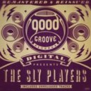 The Sly Players - Turn You On (Original mix)