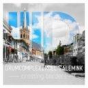 Drumcomplex, Roel Salemink - The Force (Original Mix)